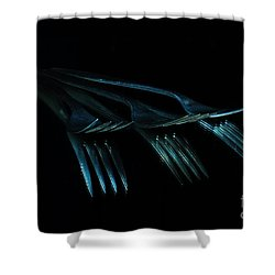 Shower Curtain featuring the photograph Blue Forks by Randi Grace Nilsberg