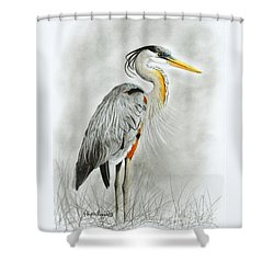 Shower Curtain featuring the drawing Blue Heron 3 by Phyllis Howard