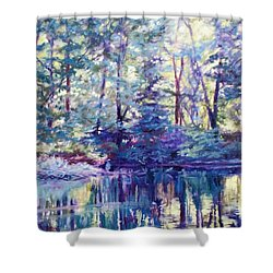 Blue Heron At Sunset Shower Curtain