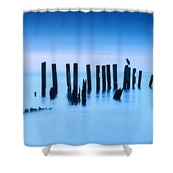 Blue Heron In Blue Shower Curtain