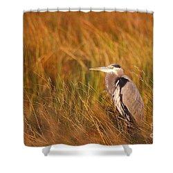Shower Curtain featuring the photograph Blue Heron In Louisiana Marsh by Luana K Perez