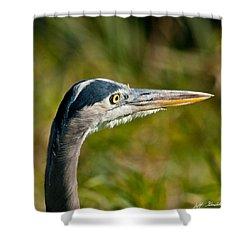 Blue Heron Shower Curtain