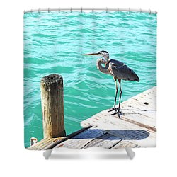 Blue Heron Morning Shower Curtain by Margie Amberge