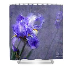 Blue Iris Shower Curtain by Lena Auxier