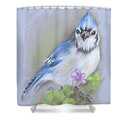 Blue Jay In Spring With Oxalis Shower Curtain
