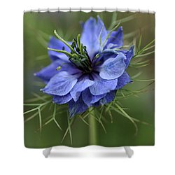 Shower Curtain featuring the photograph Blue Love by Joy Watson