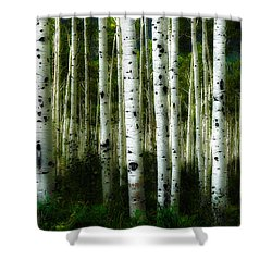 Shower Curtain featuring the photograph Blue Mood Aspens I by Lanita Williams