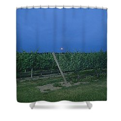 Blue Moon Shower Curtain by Robert Nickologianis