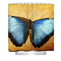 Blue Morpho Butterfly  Shower Curtain by Saija  Lehtonen