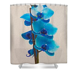Blue Orchid Shower Curtain by Scott Carruthers