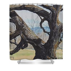 Blue Ridge Memories...sold Shower Curtain