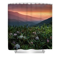 Blue Ridge Morn With Rose Bay Rhododendron  Shower Curtain by Rob Travis