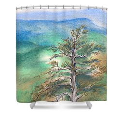 Shower Curtain featuring the pastel Blue Ridge Pine by MM Anderson