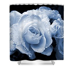 Blue Roses With Raindrops Shower Curtain by Jennie Marie Schell