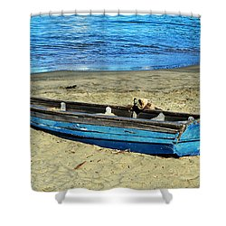 Blue Rowboat Shower Curtain by Holly Blunkall