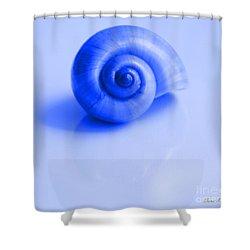 Blue Shell Shower Curtain