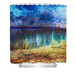 Blue Shore Shower Curtain by Randi Grace Nilsberg