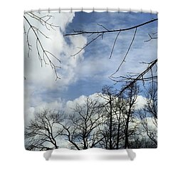 Shower Curtain featuring the photograph Blue Skies Of Winter by Robyn King