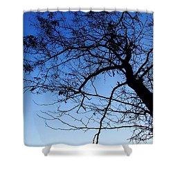 Shower Curtain featuring the photograph Blue Sky by Andrea Anderegg