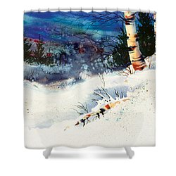 Blue Sky Birch Shower Curtain