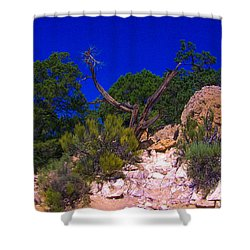 Blue Sky Over The Canyon Shower Curtain by Dany Lison