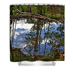 Shower Curtain featuring the photograph Blue Sky Reflecting by Jeremy Rhoades