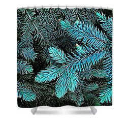 Shower Curtain featuring the photograph Blue Spruce by Daniel Thompson
