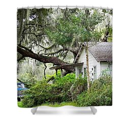 Blue Truck And Moss Shower Curtain by Patricia Greer