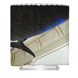 Blue Whale Experience Shower Curtain