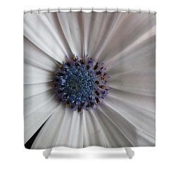 Blue-white Loveliness Shower Curtain
