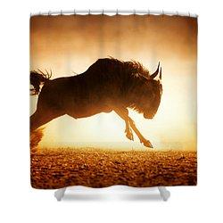 Blue Wildebeest Running In Dust Shower Curtain by Johan Swanepoel