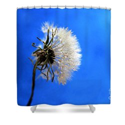 Blue Wish Shower Curtain by Krissy Katsimbras