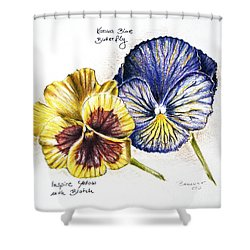 Blue Yellow Pansies Shower Curtain by Katharina Filus
