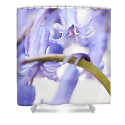 Bluebell Abstract Iv Shower Curtain by Anne Gilbert
