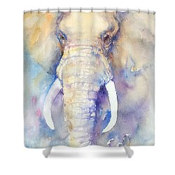 Bluebell Shower Curtain