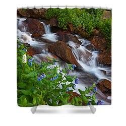 Bluebell Creek Shower Curtain by Darren  White