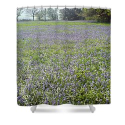 Bluebell Fields Shower Curtain