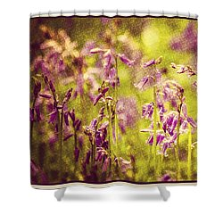 Bluebell In The Woods Shower Curtain