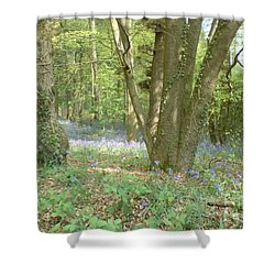 Bluebell Wood Shower Curtain