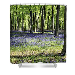 Bluebell Wood Uk Shower Curtain