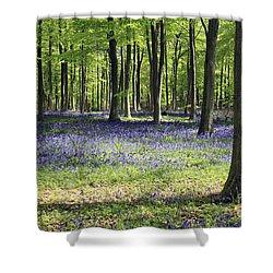 Bluebell Wood Uk Shower Curtain
