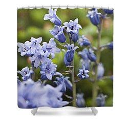 Bluebells 2 Shower Curtain by Steve Purnell