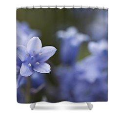 Bluebells 3 Shower Curtain by Steve Purnell