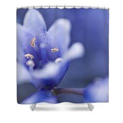 Bluebells 5 Shower Curtain by Steve Purnell