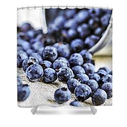 Blueberries Shower Curtain by Elena Elisseeva