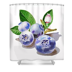 Artz Vitamins The Blueberries Shower Curtain by Irina Sztukowski