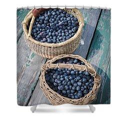 Blueberry Baskets Shower Curtain by Edward Fielding