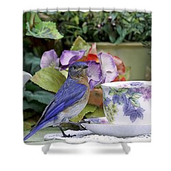 Bluebird And Tea Cups Shower Curtain