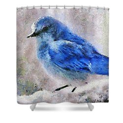 Shower Curtain featuring the painting Bluebird In Snow by Elizabeth Coats