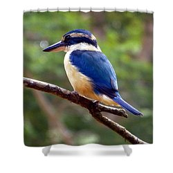Bluebird In Suva Fiji Shower Curtain